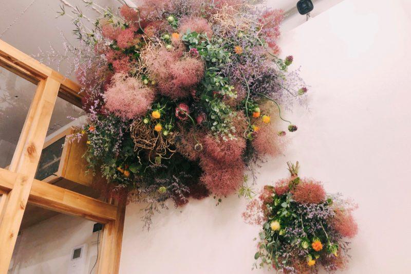 植物 × 建築